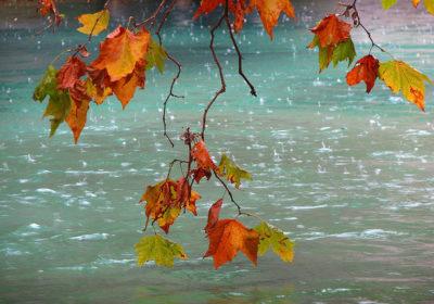 Сильные дожди могут пойти в Приморье