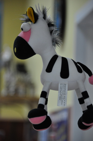 zebra19.jpg