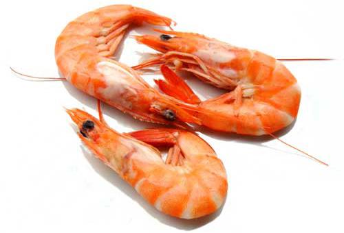 1284909576_shrimps